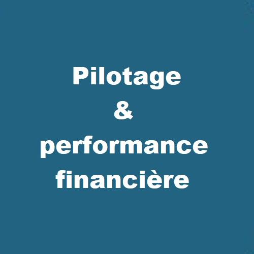 Pilotage-et-performance-financière